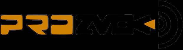 logo idx plain